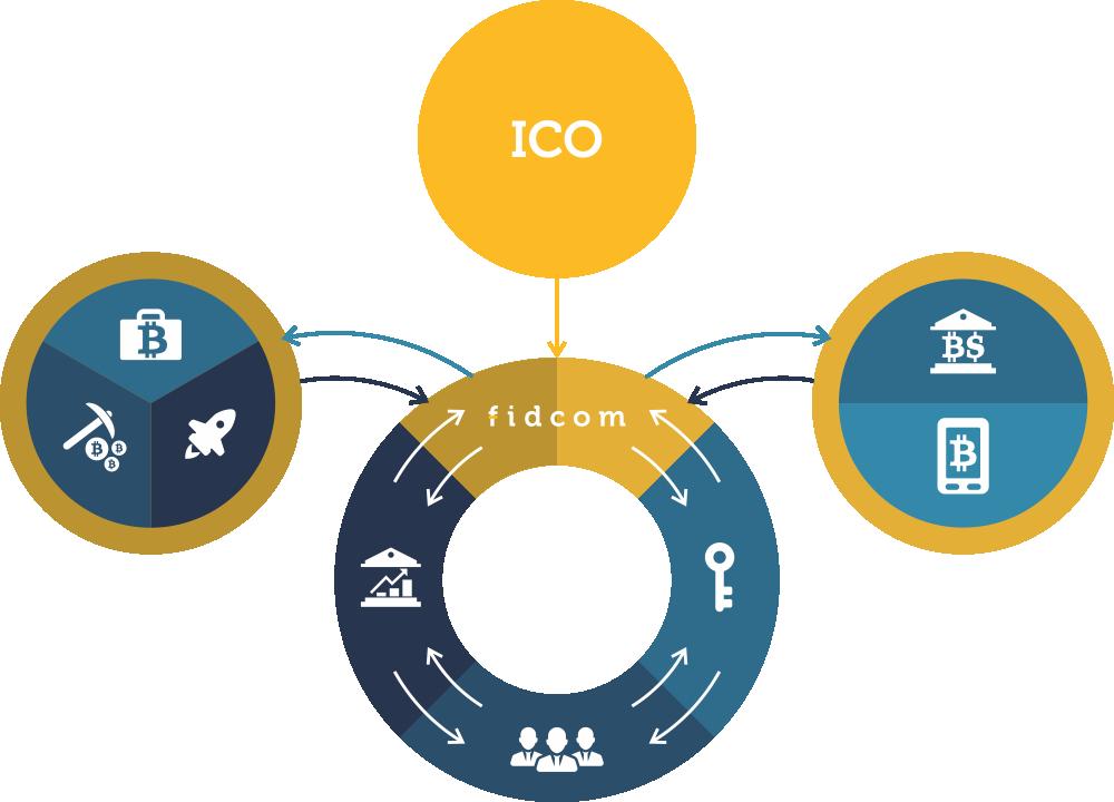 Структура инвестиций платформы Fidcom